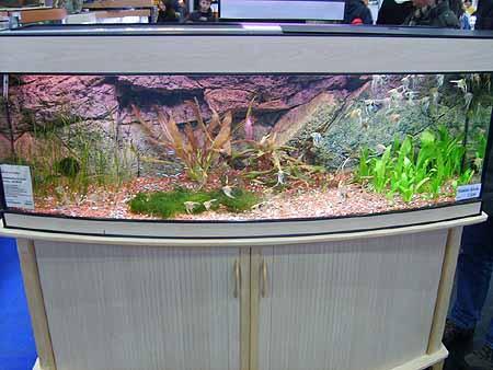aquarium-neu-kaufen-201202111550261.jpg